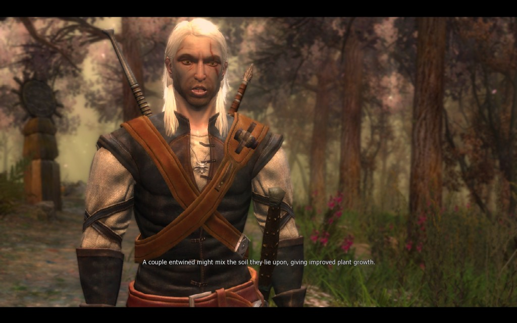 Here's a random picture of Geralt (The Witcher) being a eco-perv and looking goofy.