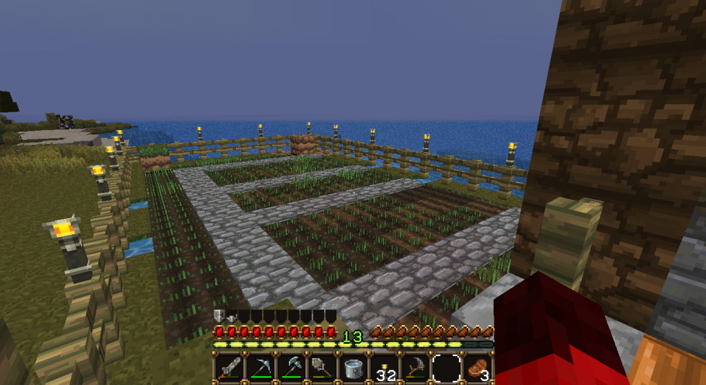 A farm that's linked to my house for safe harvesting and growing of my food! No creepers allowed....or spiders. Really anything but me is not allowed in unless it wants to help plant and grow it all.